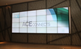Networking with ACE Connects
